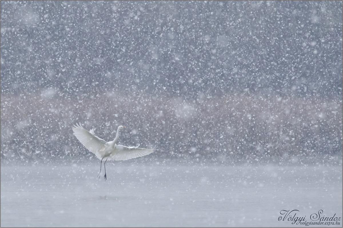 Legyen hó...