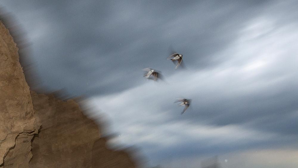 Vihar olajozott villámokkal
